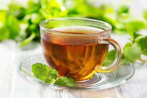 How to prepare mint tea to relieve indigestion