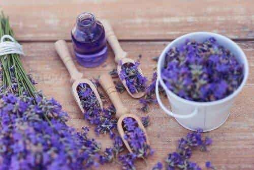 5 Ways to Use Lavender as a Relaxing Remedy