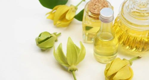 Ylang ylang oil, which can be used to control anxiety.