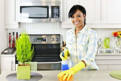 A woman cleaning the kitchen.
