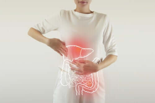 Digestive Enzymes: What Do They Do?