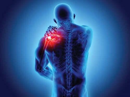 Spondyloarthropathies: Symptoms and Diagnosis