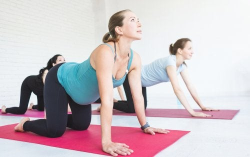 Physical Exercise for Pregnant Women: Good Exercises during Pregnancy