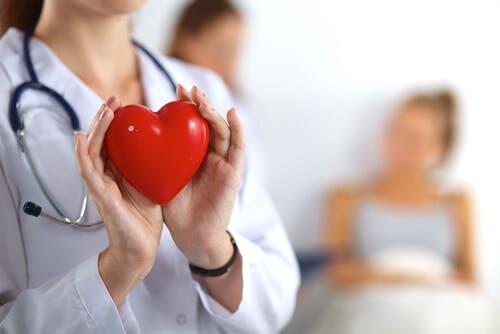 Doctor holding fake heart.