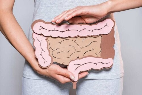 Woman in grey holding cardboard cutout of intestines in hands.