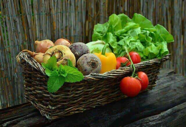 The Right Diet For People With Cancer