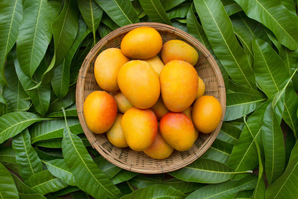 A bowl of mangoes.