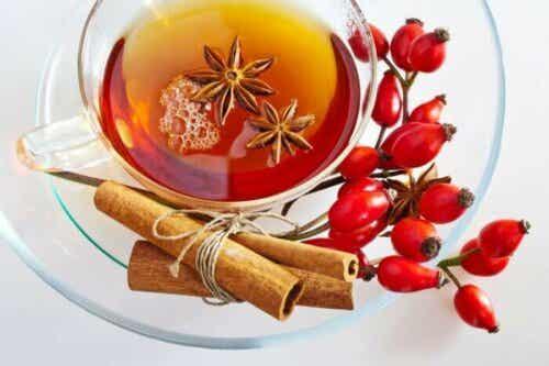 Benefits and Precautions of Rosehip Tea