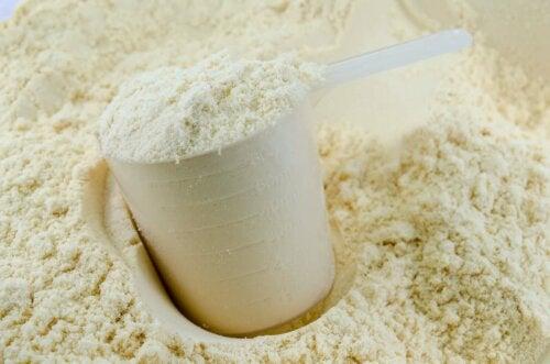 A scoop of milk protein.
