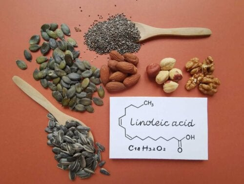 Types of seeds that contain linoleic acid.