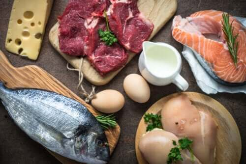 Why Is Consuming Proteins So Important?