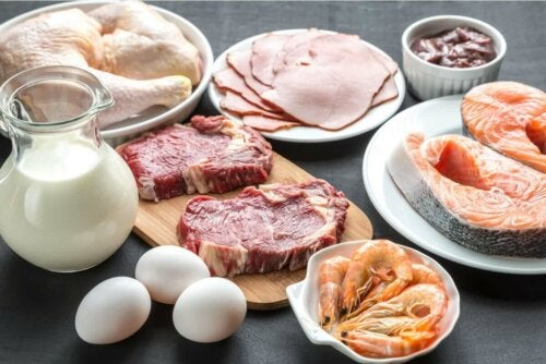 The function of proteins in the body are several and extremely important. In this photo, plates full of raw meat, representing animal protein.