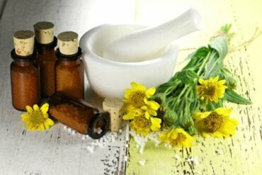 The Use of Arnica: Benefits and Contraindications