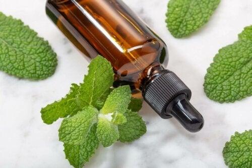 A bottle of mint oil.