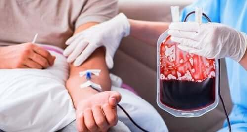 Artificial Blood for Transfusions: What Do They Involve?