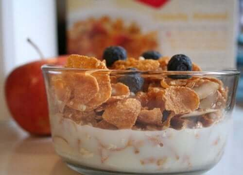 A bowl of cereal and yogurt.