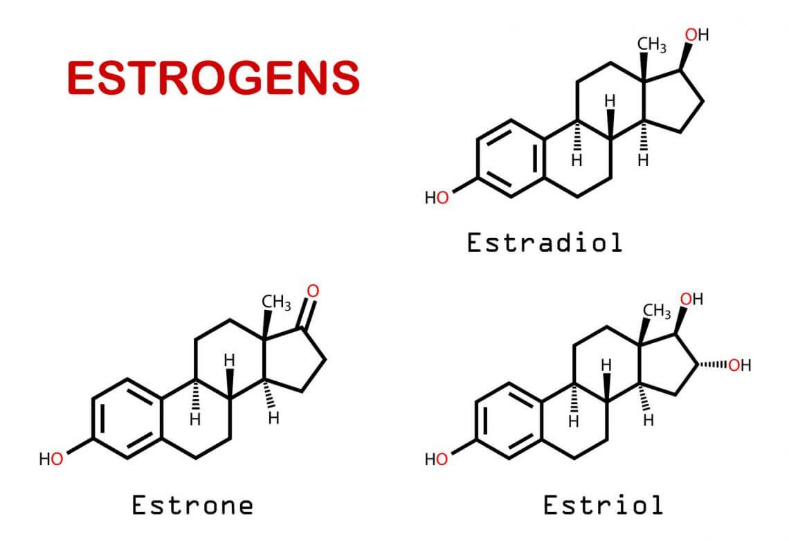 Estrogens.
