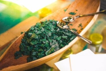5 Precautions and Contraindications when Taking Spirulina