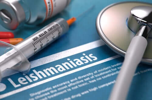 Is Leishmaniasis Contagious?