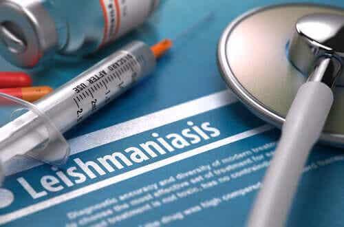 Is Leishmaniasis Contagious?