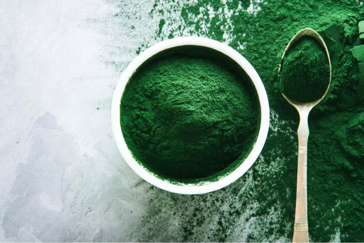 Spiruline in powder form.