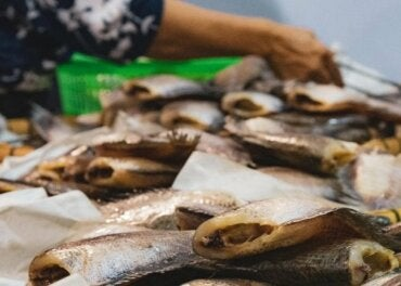 The Symptoms of Different Types of Fish Poisoning