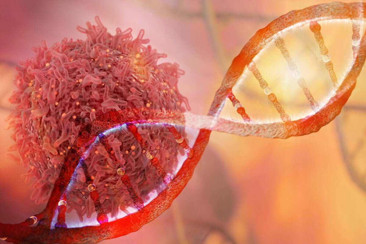 A DNA strand and a cancerous cell.