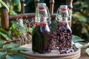 Elderberry Syrup: Benefits, Precautions, and Preparation