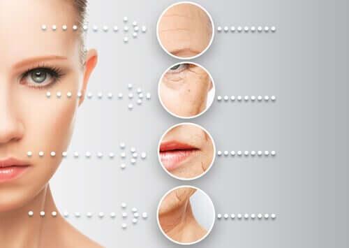 Skin ageing.