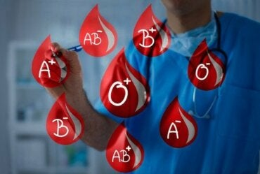 Blood Types: Donate and Receive Blood