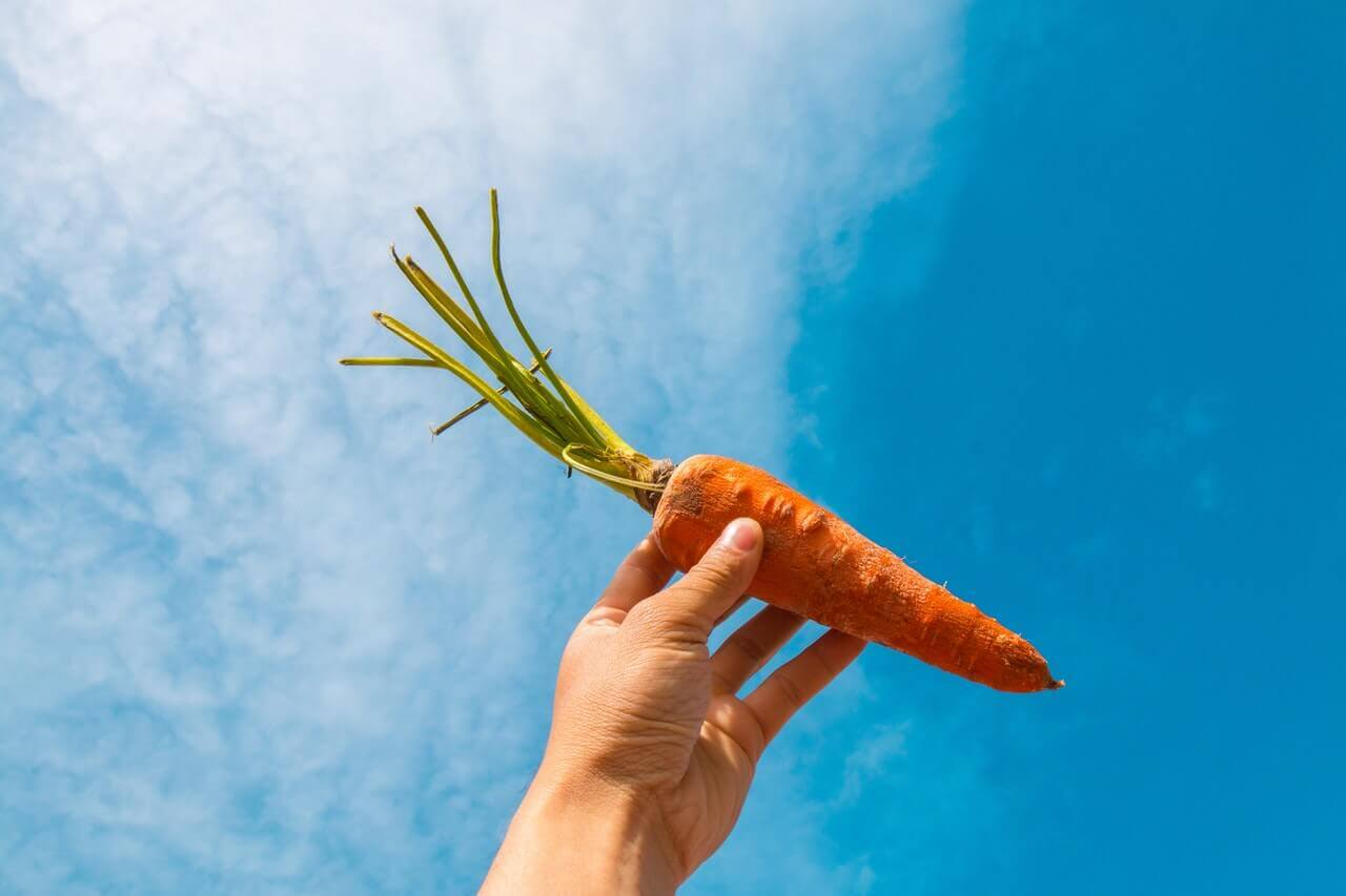 Carrot with carotene benefits.