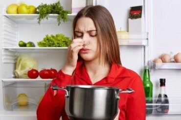 5 Tricks to Remove Fish Smell from Your Kitchen