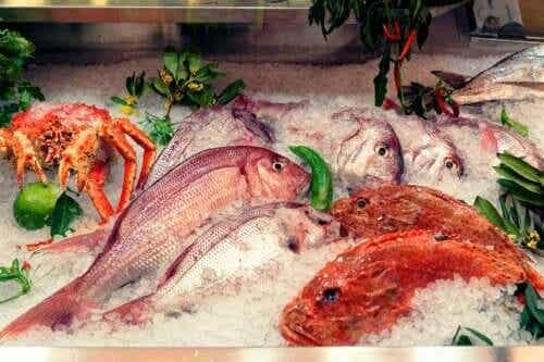 The Effects of Mercury in Fish