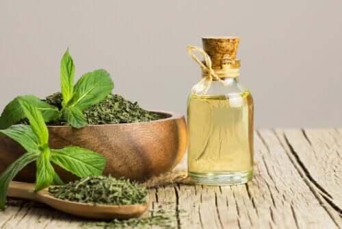 Peppermint Oil Against Irritable Bowel Syndrome