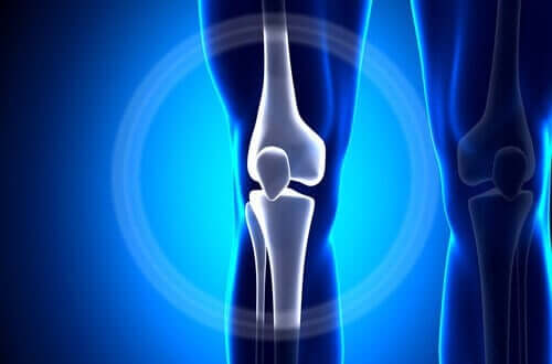 An X-ray of a knee.