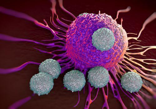 Antibodies attacking an antigen.