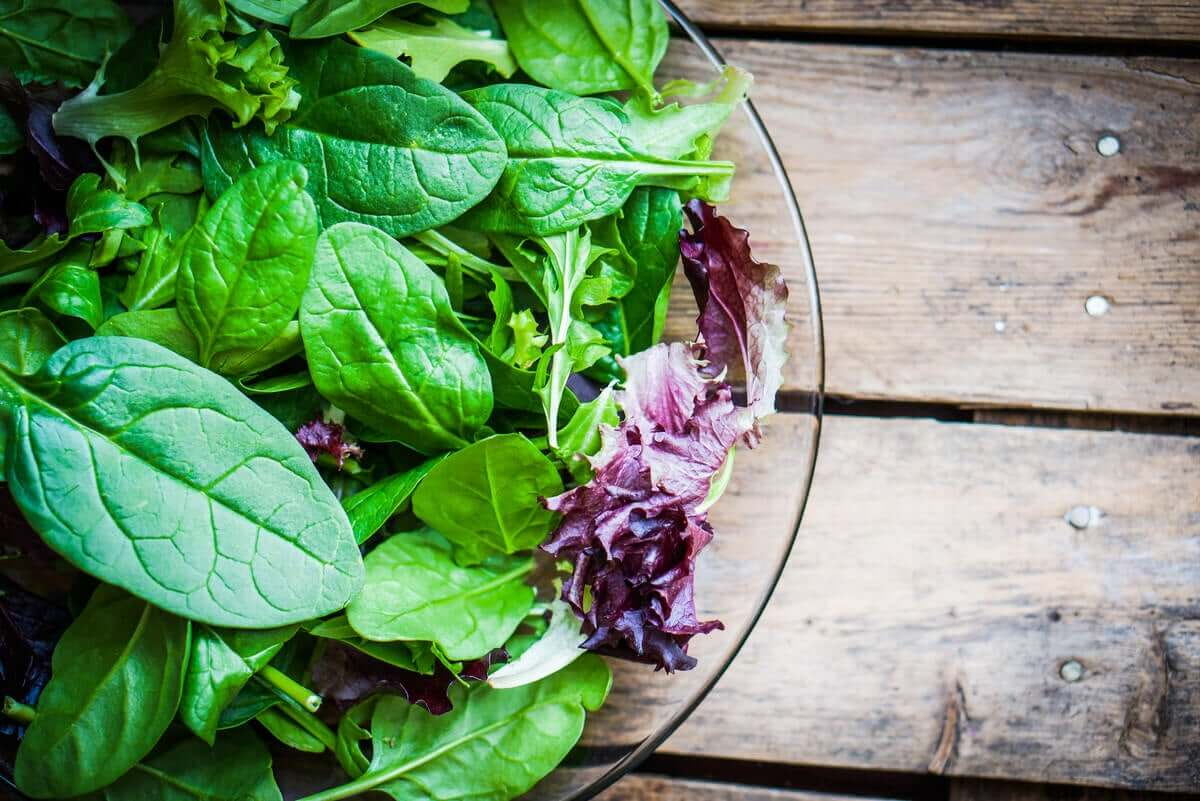 A bowl of green and purple salad leaves.