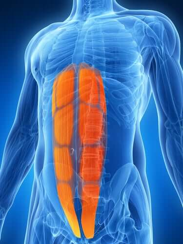 What Is Abdominal Strain?
