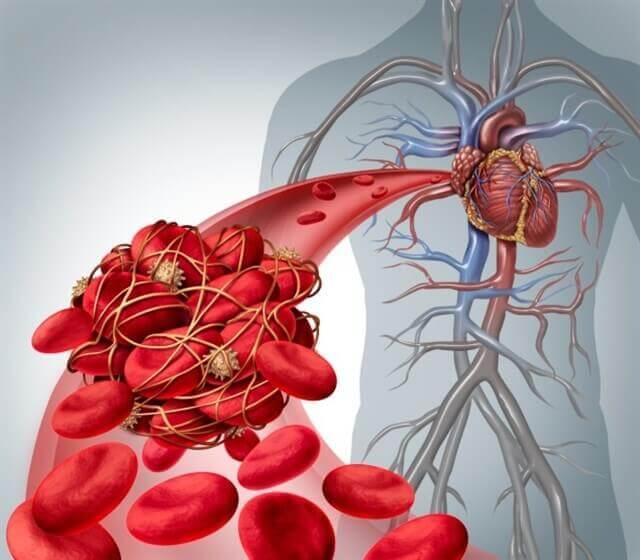 Inside the body.