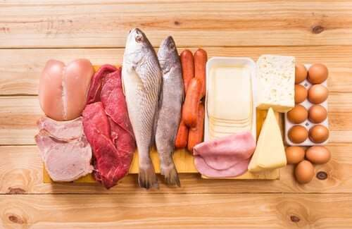 The Risks of Adhering to a High-Protein Diet