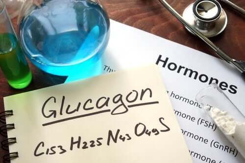 What Is Glucagon? What Are Its Functions?