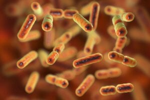 What Is Intestinal Dysbiosis?