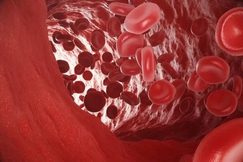 Arterial Hypoxemia: What It Is and What Causes It