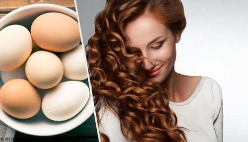 3 Egg Remedies to Moisturize Dry Hair