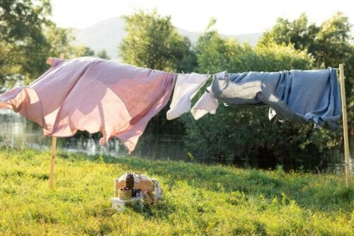 A clothesline in a field.