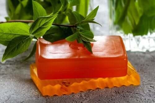 Uses, Properties, and Contraindications of Papaya Soap