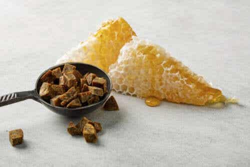 Benefits of Propolis for Oral Health