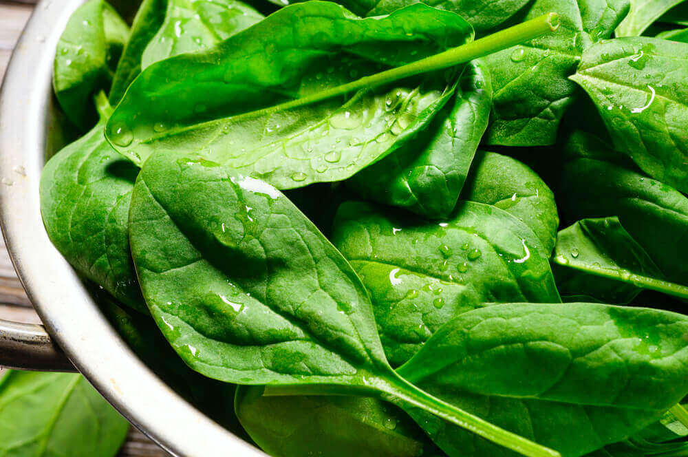 A bowl of freshly washed spinach leaves.