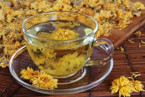 Chrysanthemum Tea: Benefits and Precautions