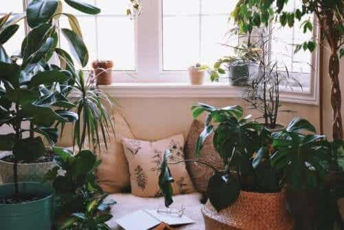 Ideas for Creating a Relaxing Corner at Home